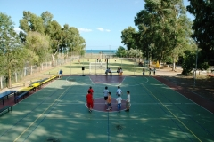 Nea-xyshammos-Basket04