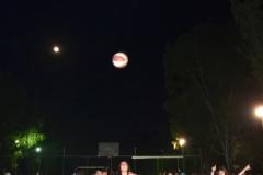 Nea-xyshammos-Basket10